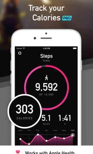 StepsApp Pedometer & Step Counter image 3