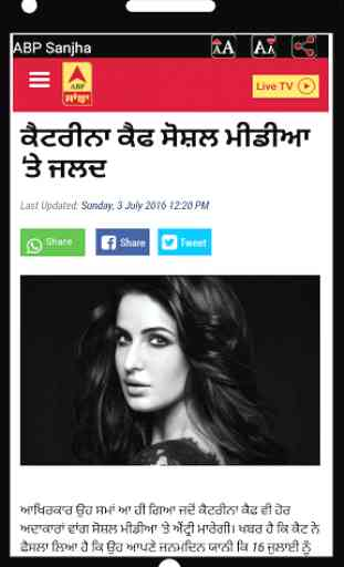 All Punjabi News Newspapers 3