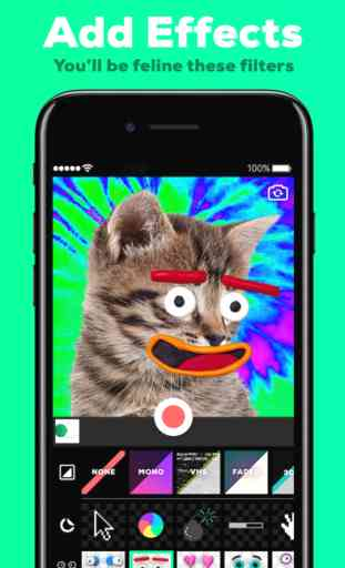 GIPHY Cam (iOS/Android) image 1