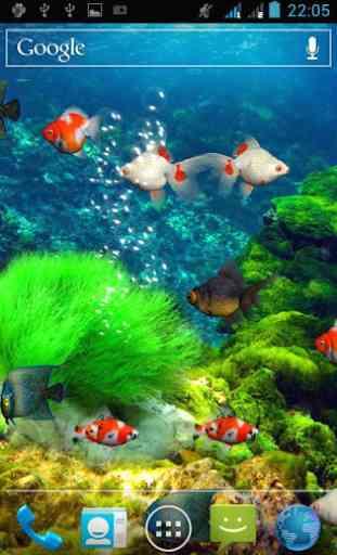 Aquarium Live Wallpaper 1
