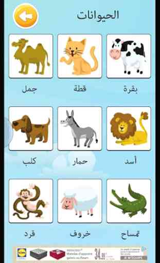 Learn arabic vocabulary game 4