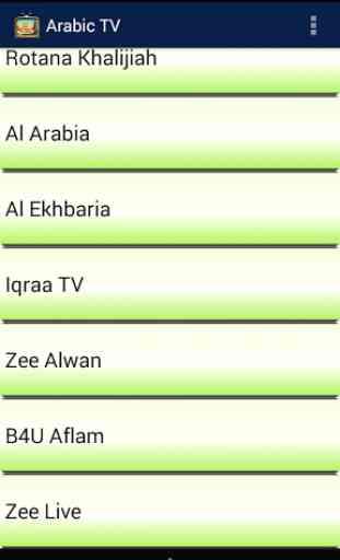 Arabic TV 2