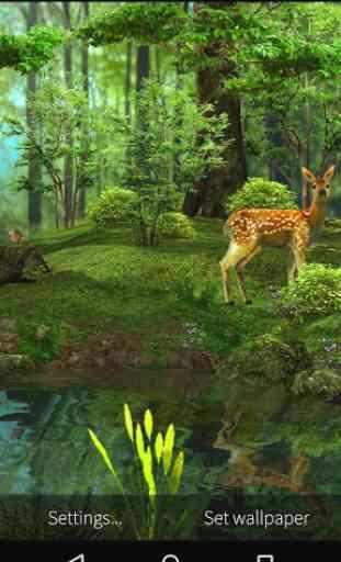 3D Deer-Nature Live Wallpaper 4
