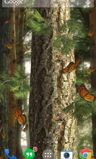 Butterflies 3D live wallpaper 3