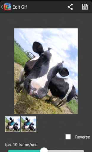 GIF Camera (Android) image 1