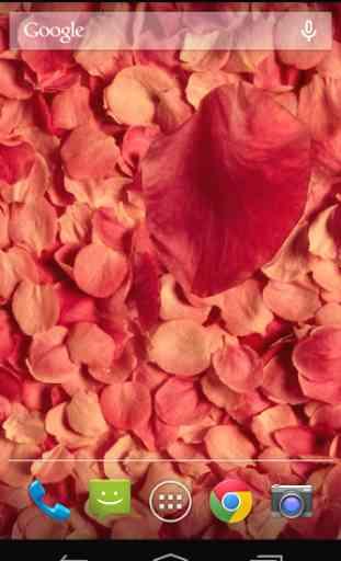 Petals 3D live wallpaper 4