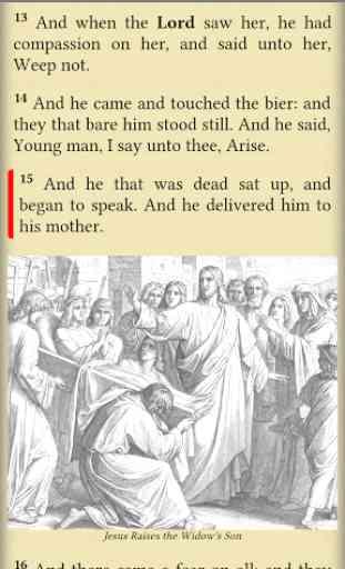 Bible: KJV, BBE, ASV, WEB, LSG 4