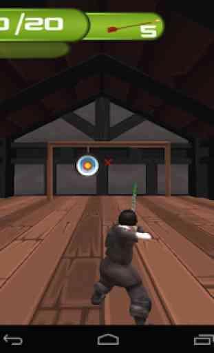 Archery Master 3D Advance 3