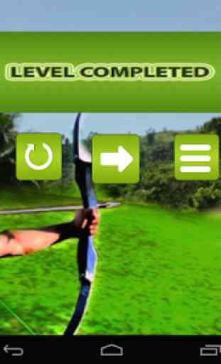 Archery Master 3D Advance 4