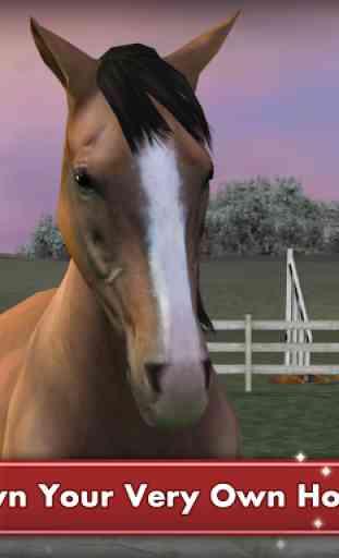 My Horse 1