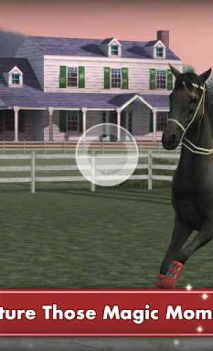My Horse 4