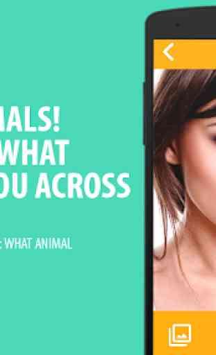 What animal simulator 2