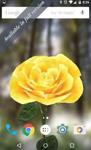 3D Rose Live Wallpaper Free 3
