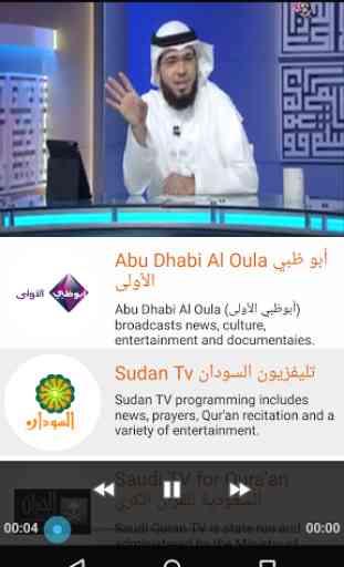 Arabsat TV Everywhere 3