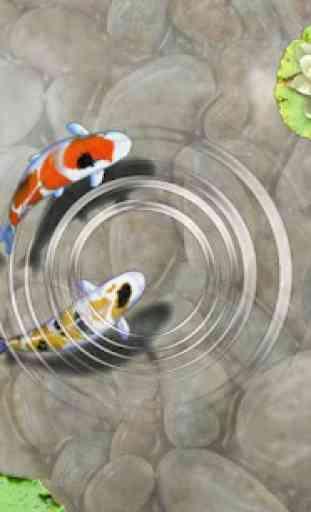 Feed the Koi fish Kids Game 1