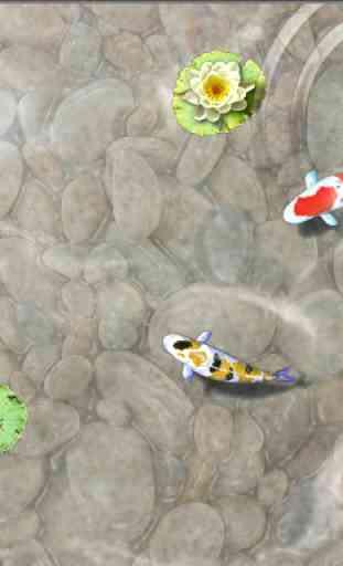 Feed the Koi fish Kids Game 3