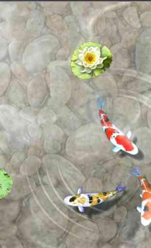 Feed the Koi fish Kids Game 4