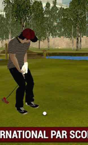 Professional Golf Play 3D 2