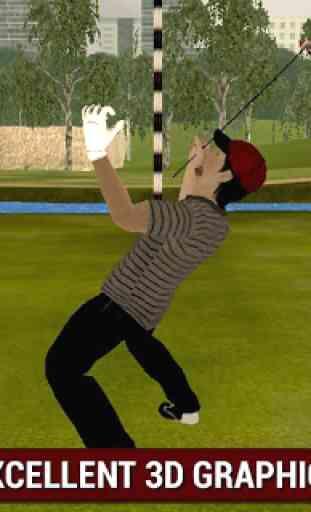 Professional Golf Play 3D 3