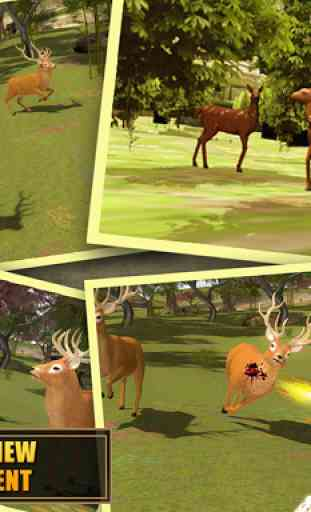 Deer Hunting - Sniper Shooting 2