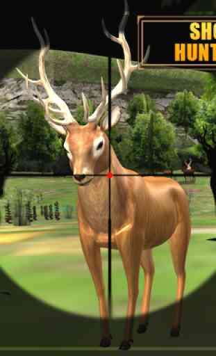 Deer Hunting - Sniper Shooting 3