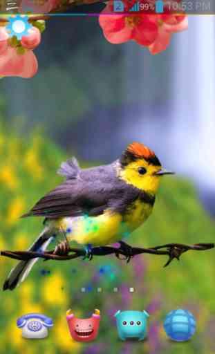 Birds Live Wallpaper 3D 2