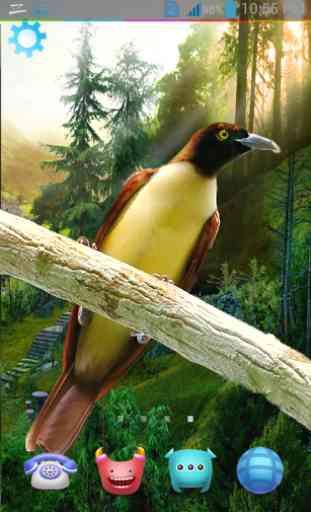 Birds Live Wallpaper 3D 4