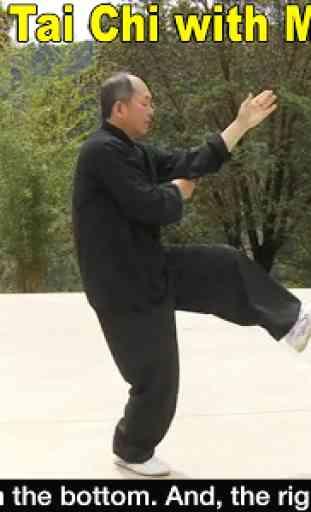 Yang Tai Chi for Beginners 2&3 1
