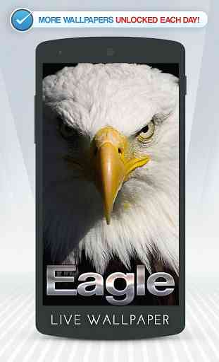 Eagle Live Wallpaper 1