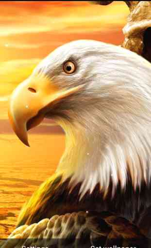 Eagle Live Wallpaper 3