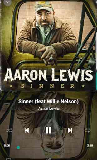 Aaron Lewis 3