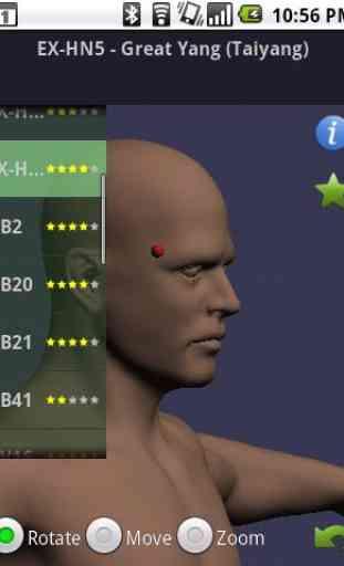 Massage Map 3D Free 1
