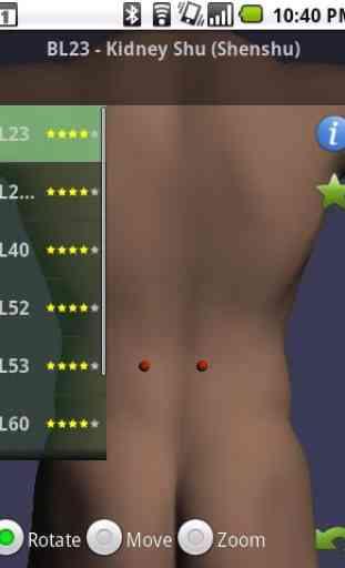 Massage Map 3D Free 2