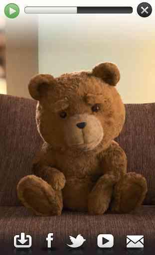 Talking Ted LITE 4