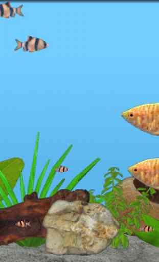 Aquarium Fish 4