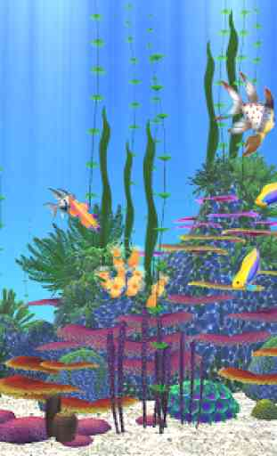 Aquarium Sim 2