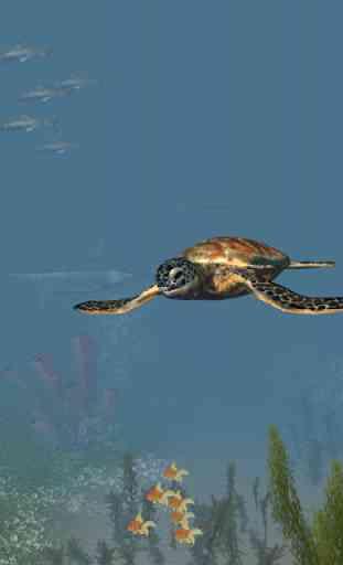 VR Ocean Aquarium 3D 2