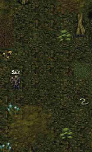 9th Dawn RPG 2