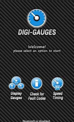 Digi-Gauges (OBD 2 & Car) 3