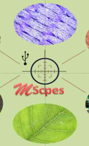 MScopes for USB Camera 1