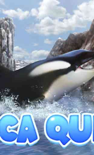 Orca Simulator: Animal Quest 1