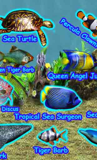 Pocket Aquarium 2