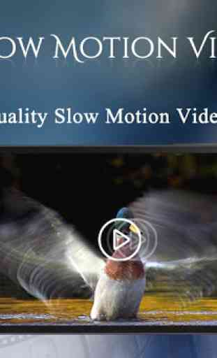 Slow Motion Video Maker 4