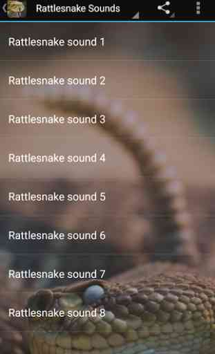 Rattlesnake Sounds 2