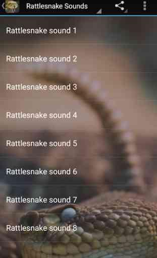 Rattlesnake Sounds 3