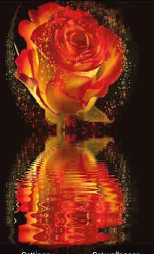 3D Rose Live Wallpaper 2