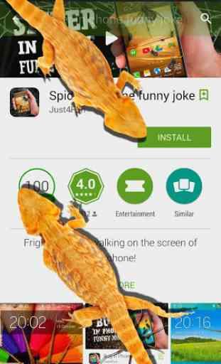 Lizard in phone funny joke 2
