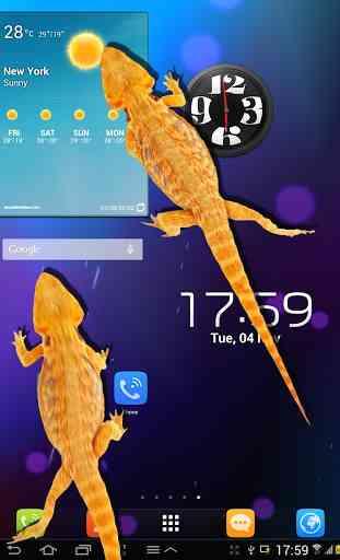 Lizard in phone funny joke 4