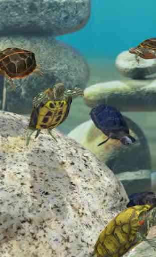 Fish Farm 3 - 3D Aquarium Simulator 2