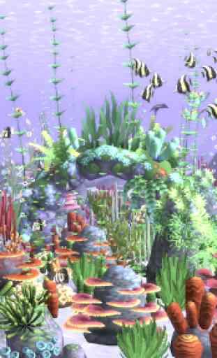 HealingAqua - My Aquarium 1